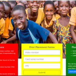 Check BECE 2019 School Placement