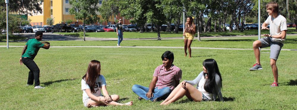 University of South Florida International Scholarship