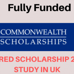 Commonwealth Shared Scholarships are for candidates from least developed and lower-middle-income Commonwealth countries, for full-time Master's study on selected courses, jointly supported by UK